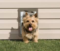 is your pet door secure petsafe