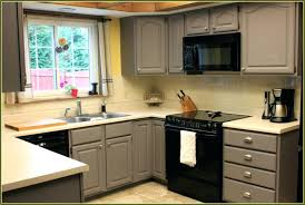 Smart Kitchen Cabinets Extraordinary Ikea Kitchen Cabinet Refacing Most Awesome Reviews Home Depot