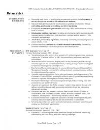 Resume For Sales Account Manager Sample National Sales Manager