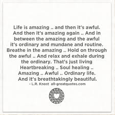 Amazing Life Quotes 10 Best Life Is Amazing And Then It's Awful Life Quotes Cards