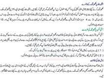 essay on cleanliness in urdu fun persuasive essay topics for essay on cleanliness in urdu
