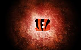 cincinnati bengals wallpaper 8 1920 x 1200