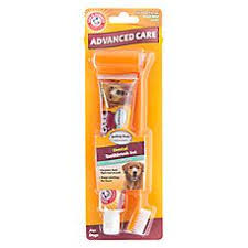 arm hammer advanced pet care dog toothpaste brush set