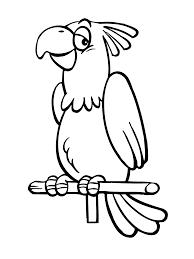 Kleurplaat Piraat Papegaai Pirat Mit Papagei Ausmalbild Malvorlage