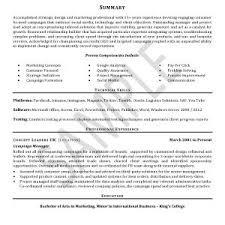 New Best S Of Professional Cv Examples Professional Cv Writing New ...