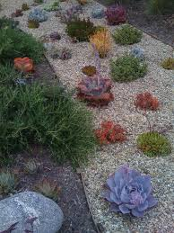 Small Picture Outdoor Garden Appealing Small Plants With Gravel For Modern