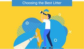Cat Litter Comparison Chart 13 Best Cat Litters Of 2019 Unbiased Review Were All