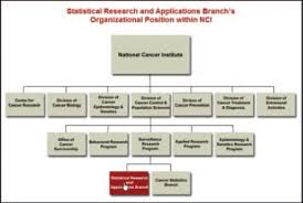 Diagram Of Organizational Chart Organization Chart An Overview Sciencedirect Topics