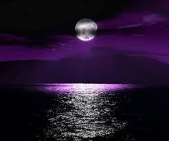 Purple Ocean Sunset Beautiful Moon Purple Sky Beautiful