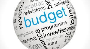 Wapi Budget