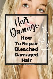 Repair Damage To Your Hair That