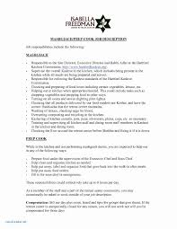 Recommendation Letter For Employment Doc Valid Job Reference Letter