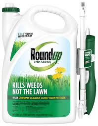 roundup for lawns1 ready to use