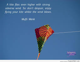 Chinese Quotes About Kites Best Quotes For Your Life