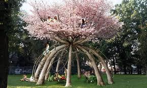 Výsledek obrázku pro stromy