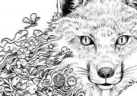 20 Disegni Da Colorare Mandala Animali Disegni Da Colorare