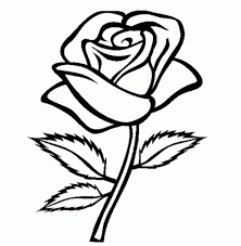 Small Picture Rose flower coloring pages ColoringStar