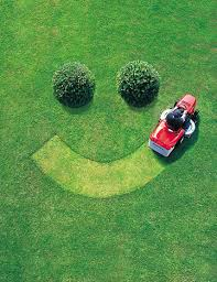 Ehlinger Lawn Service How To Select A Lawn Care Service
