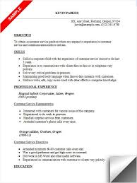 customer service resume objective best resume objective academic essays online buy essay of top quality resume examples