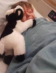 sick boy wants herd of stuffed cows for