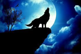 wolf howling at the moon wallpaper hd. Modren Wallpaper 1920x1080 Moon Astronauts Illustration Wallpaper  DigitalArtio Inside Wolf Howling At The Hd