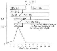 Hep B Serology Chart Hepatitis Panel Interpretation Taming The Sru
