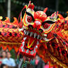 Chinese dragons are wonderful both in their might and in their colors, certainly one of the most colorful legendary beasts that ever existed. 1