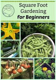 Square Foot Garden Plant Spacing Chart Beginners Guide To Square Foot Gardening The Cape Coop