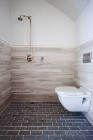 EUROPEAN BATH Open Shower and Wall Mount Toilet traditional-bathroom