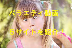 バラエティ 動画視聴
