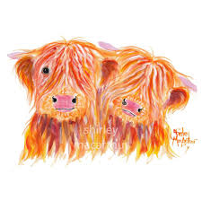 details about highland cow prints of original scottish painting buds by shirley macarthur