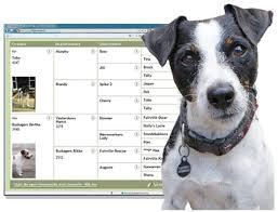 Dog Pedigree Template Free Printable Dog Pedigree Chart For