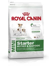 Royal Canin Mini Starter 4 Kg Dry Dog Food Price In India