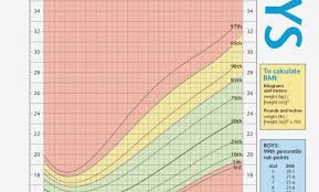 Bmi Chart Child Bmi Chart For Children Will Be A Thing Of Chart Information