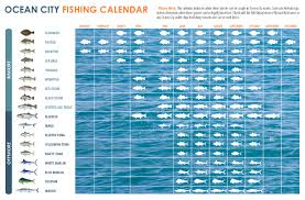 Md Tide Chart 53 Interpretive How To Read Tide Charts For Fishing