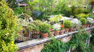 Small Picture Exellent Deck Garden Grown In Container On Balcony For Decorating