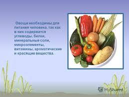 Презентация на тему Значение овощей в питании человека Автор  2 Овощи необходимы