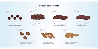 Bowel Movement Consistency Chart Improving Urinary And Faecal Incontinence With Fibre Tena