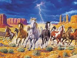 wild horses wallpaper hd animals wallpapers white wild horses wallpapers