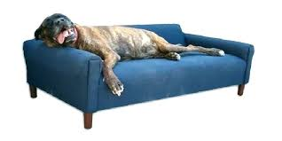 best couch for dog owners best leather couches for dogs best sofa dog owners best couches