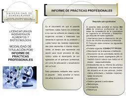 Informe Profesional
