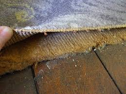 How To Lay Hard Wood Floor Greencheese Org  U003e Source. Asbestos In Carpets