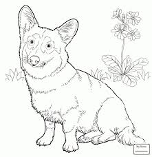 Dachshund Coloring Pages Inspirationa Boston Terrier Coloring Page