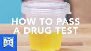 How to pass a piss testy