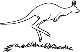 Small Picture Coloring Pages Animals Coloring Pages Of Kangaroo Kangaroo