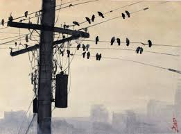 saatchi art artist s khan painting birds on a wire art