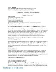 Account Manager Resume Samples Dew Drops