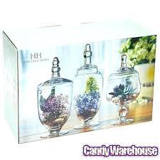 candy jars set combinations high transpa lid