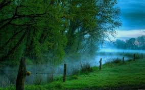 new nature wallpaper. Contemporary Nature Wallpaper Nature New Free Desktop 8 HD Wallpapers With P