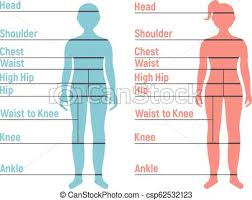 Boy And Girl Size Chart Human Front Side Silhouette Isolated On White Background Vector Illustration